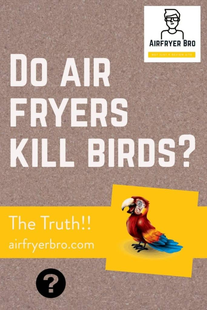 do you need to worry about air fryers around your pet birds?