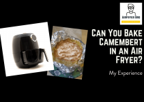 Baked Camembert in an Air Fryer??[SURPRISING RESULTS]